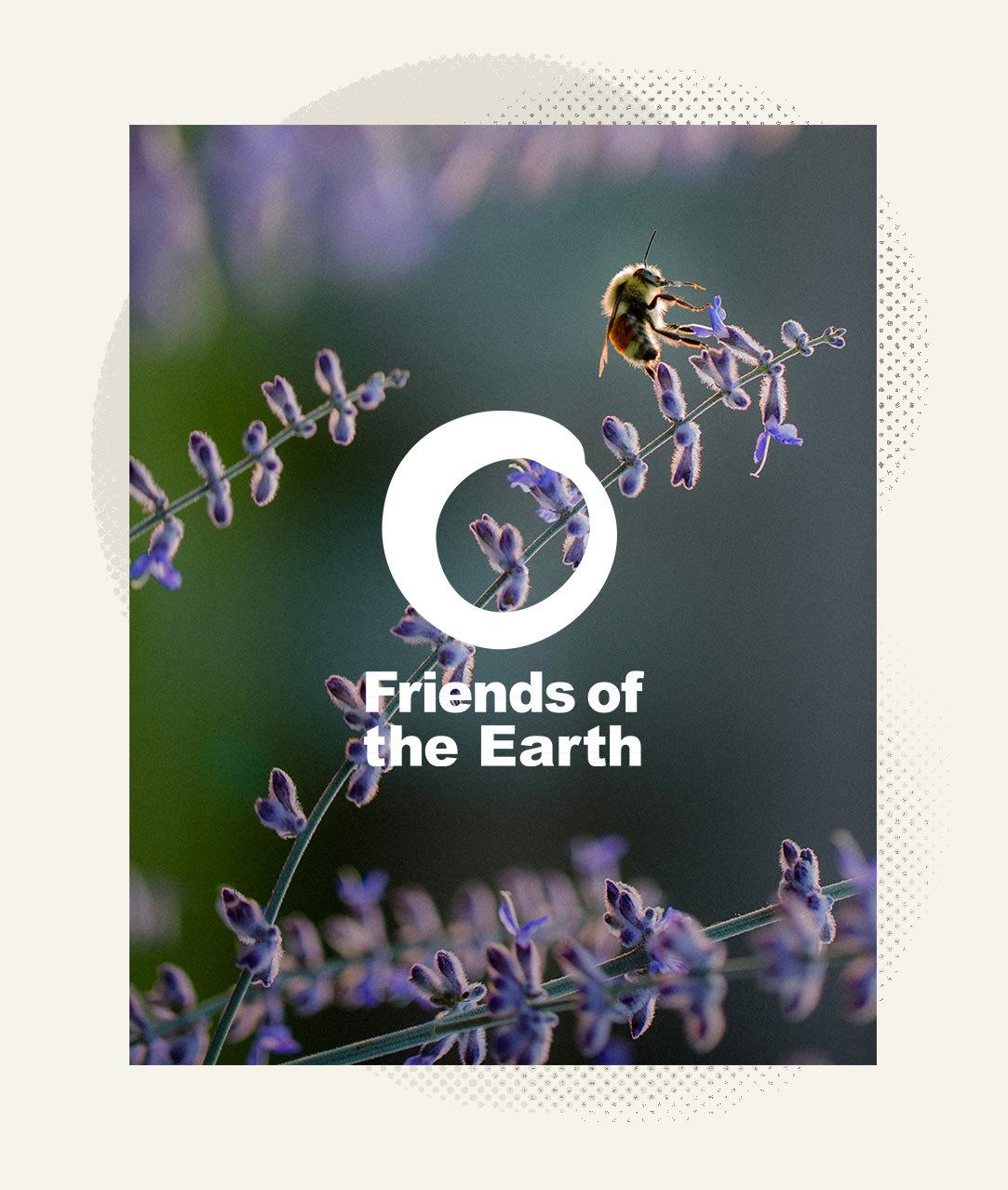 duchess_friends_friends-of-earth_03.jpg