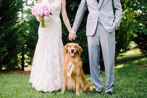 Dog Friendly. - We know how important your cute & cuddly best friend is and we wouldn't want him or her to miss your special day! As long as they are under control dogs are allowed on our lawns and to be a part of your wedding day.