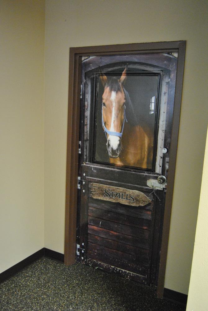 Horse Stall door wrap