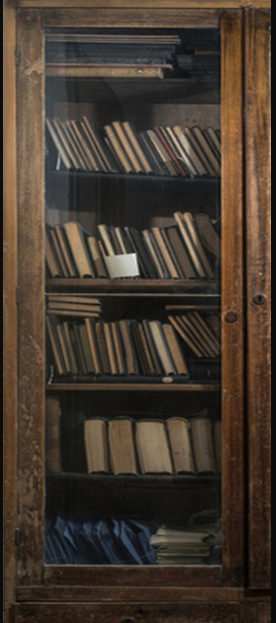 Old books in a vintage library door wrap left