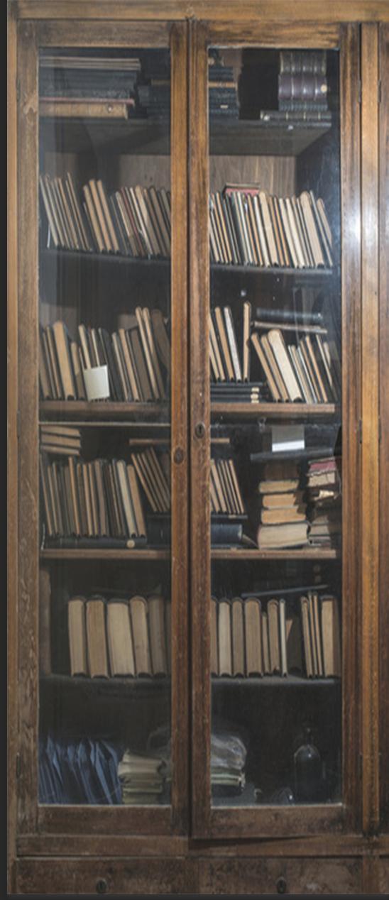 Old Book Shelf Door Wrap