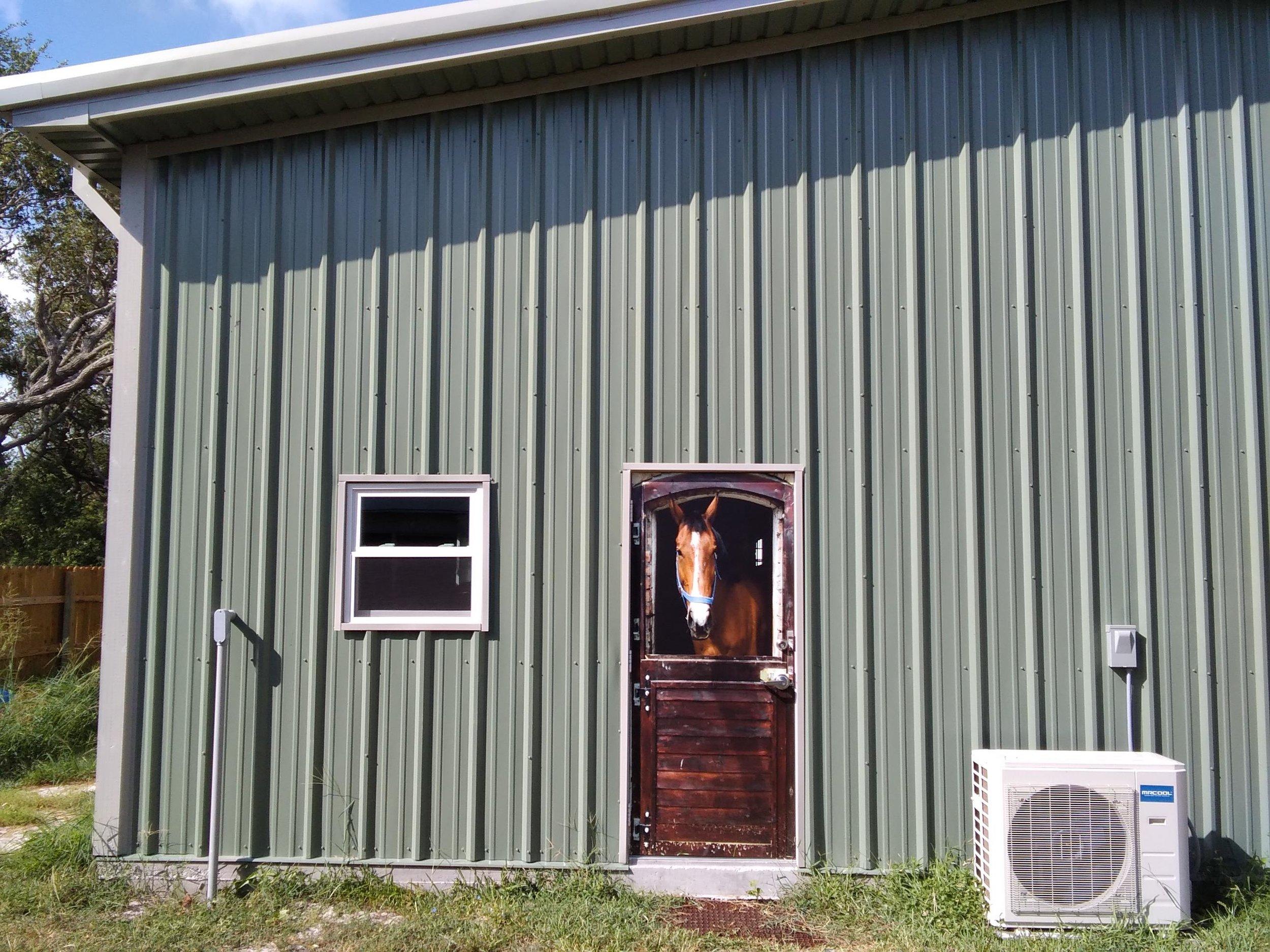 Horse Barn Door Wrap, Rm wraps, Barn door