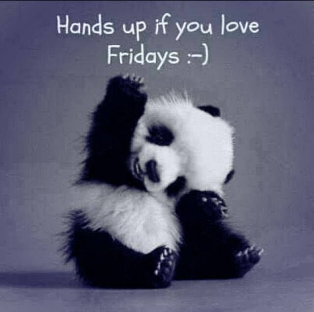I've become a little obsessed with all the cute things I see on Pinterest lately. Enjoy this baby panda.