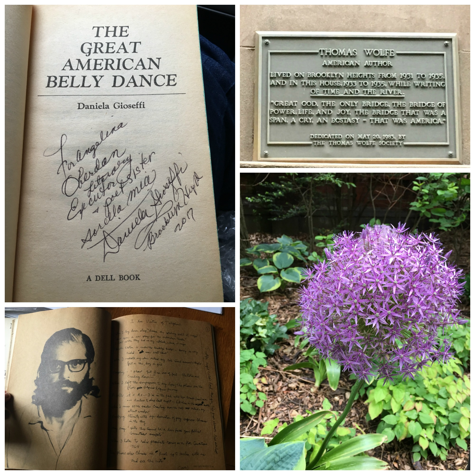 Clockwise: signed edition of DG's  The Great American Belly Dance,  plague at Thomas Wolfe home (next to Auden's), flower on the Promenade, Ginsberg photo and draft in an old lit. journal.