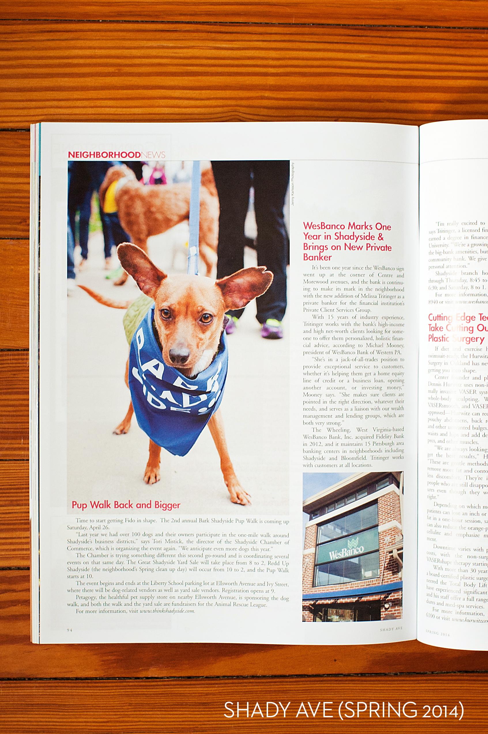 shady ave magazine 1.jpg