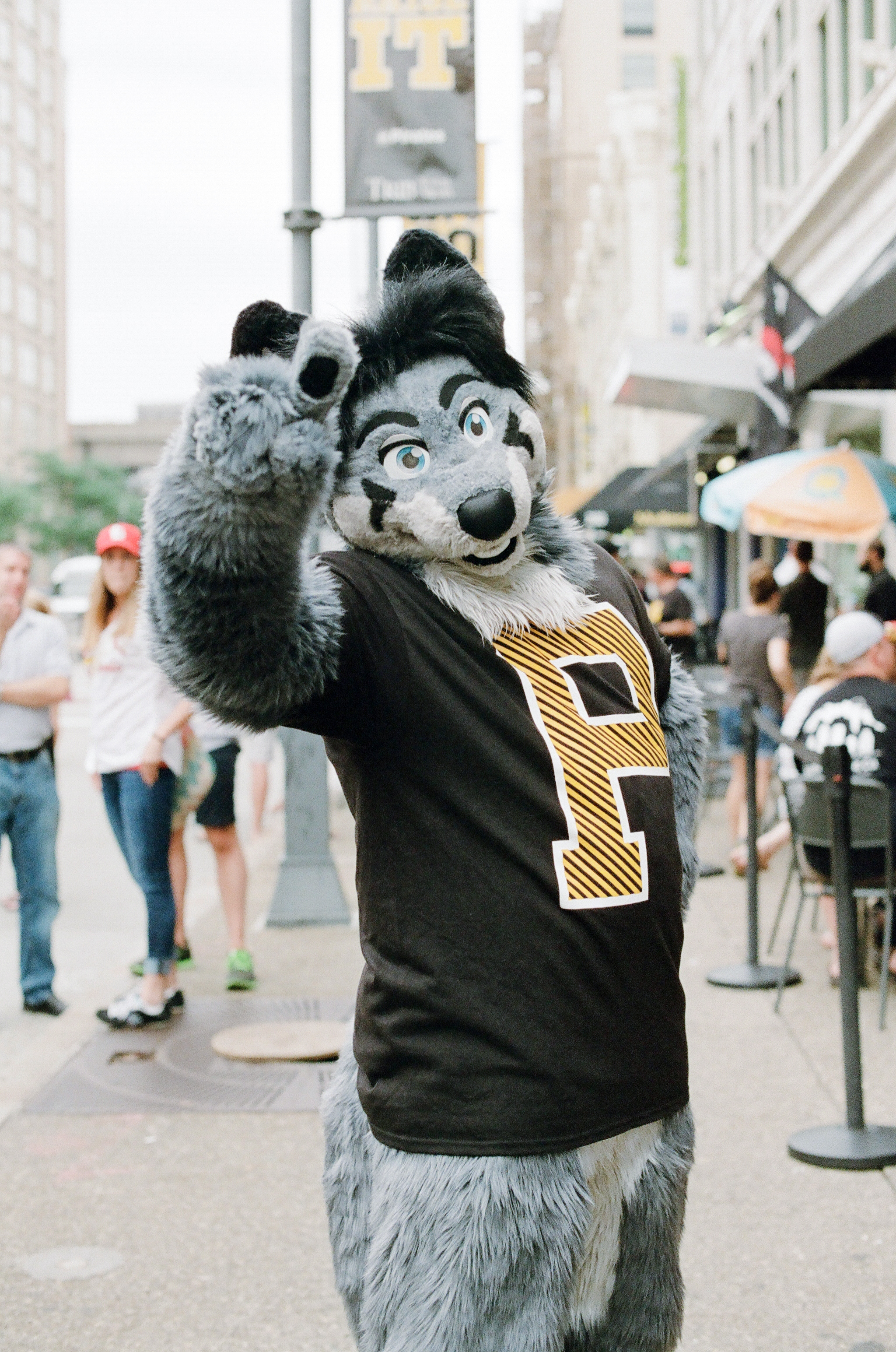 anthrocon-pittsburgh-2015-35.jpg