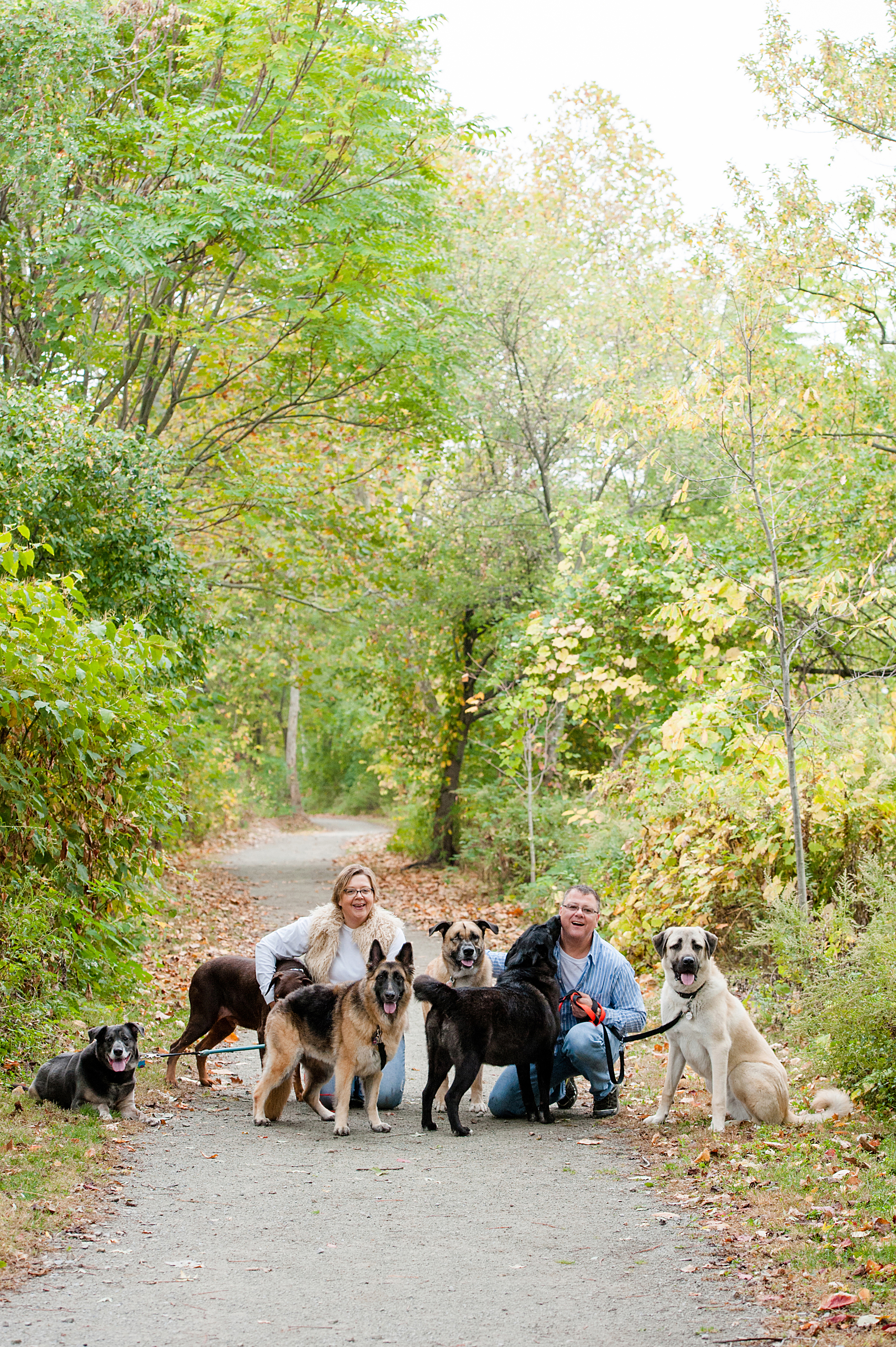 bernard-dog-run-pittsburgh-walsh10.jpg