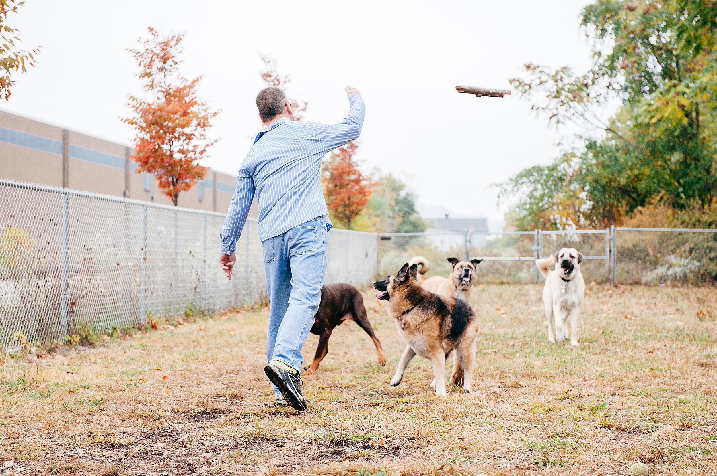 bernard-dog-run-pittsburgh-walsh15.jpg