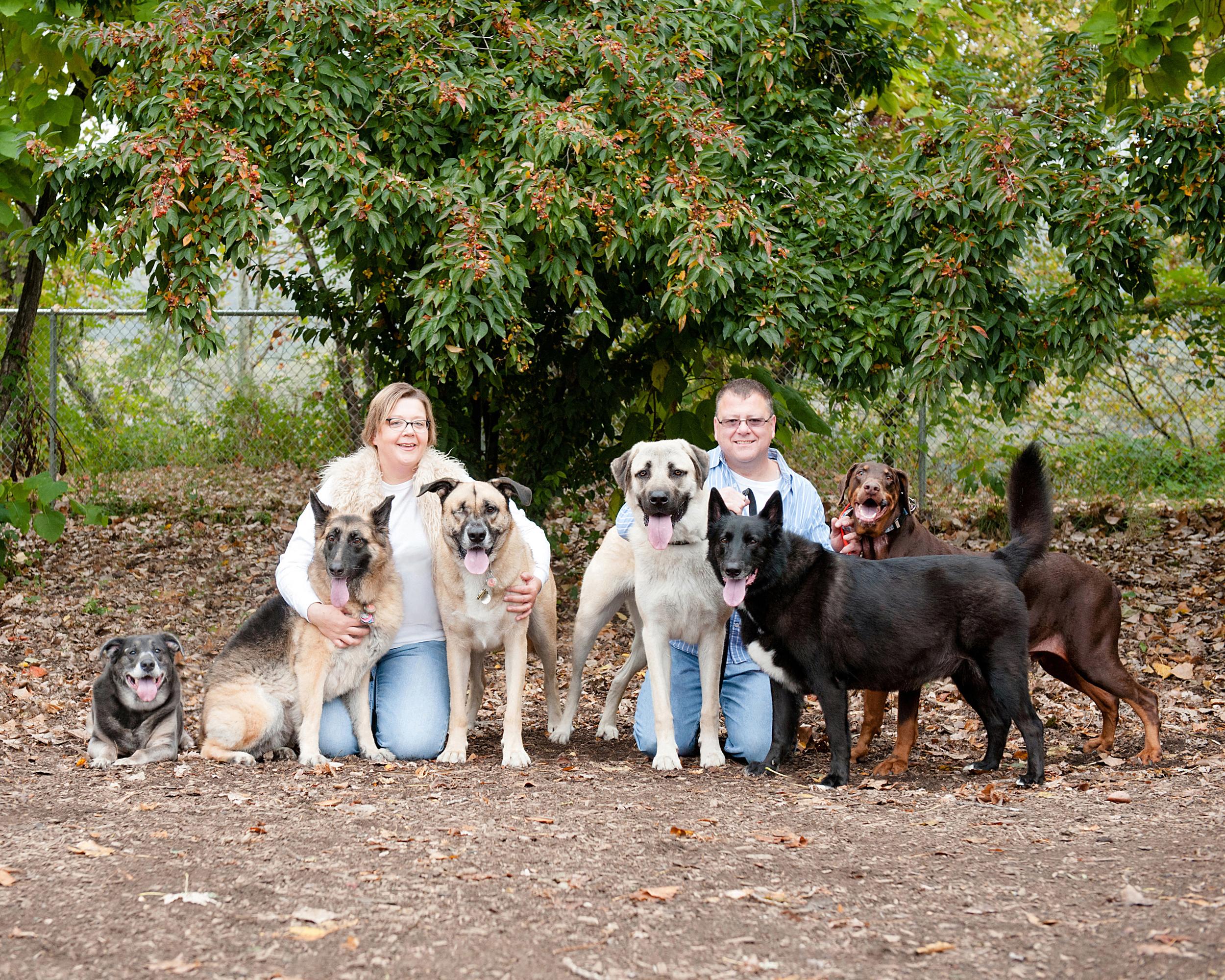 bernard-dog-run-pittsburgh-walsh24.jpg