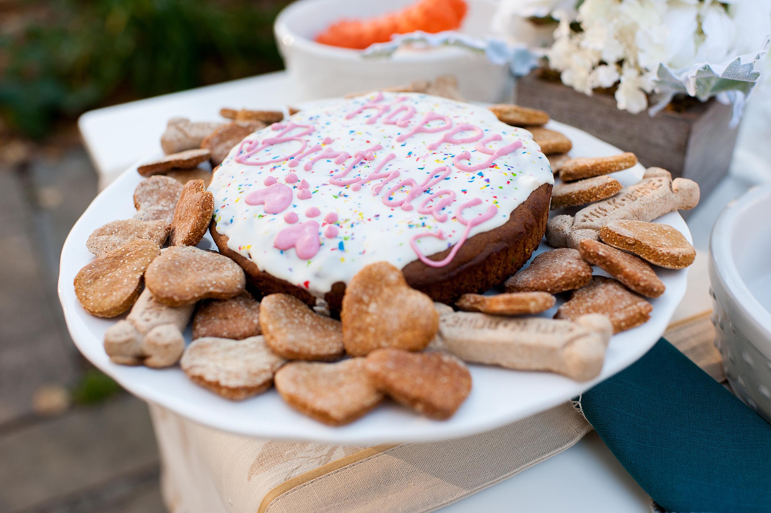 dog-birthday-party-jenny-karlsson-002.jpg