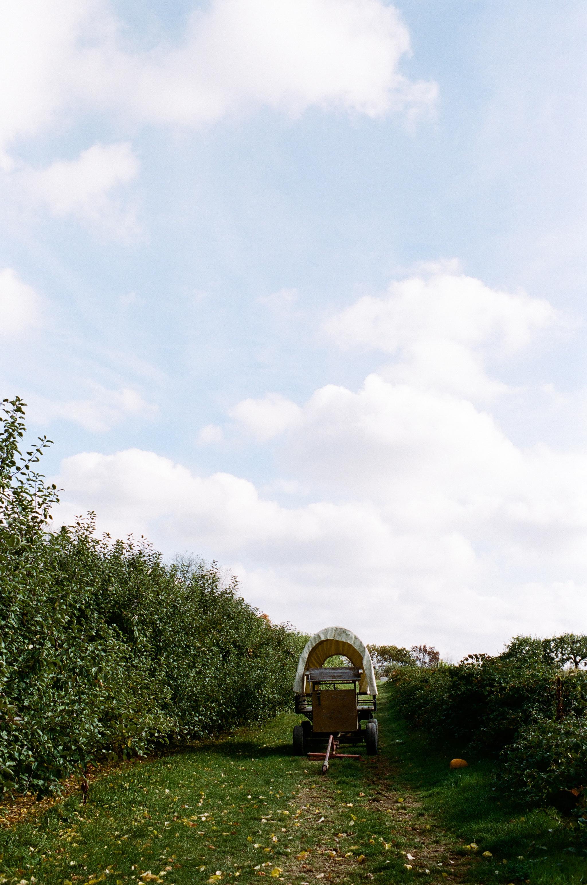 soergel-orchards-pittsburgh-014.jpg