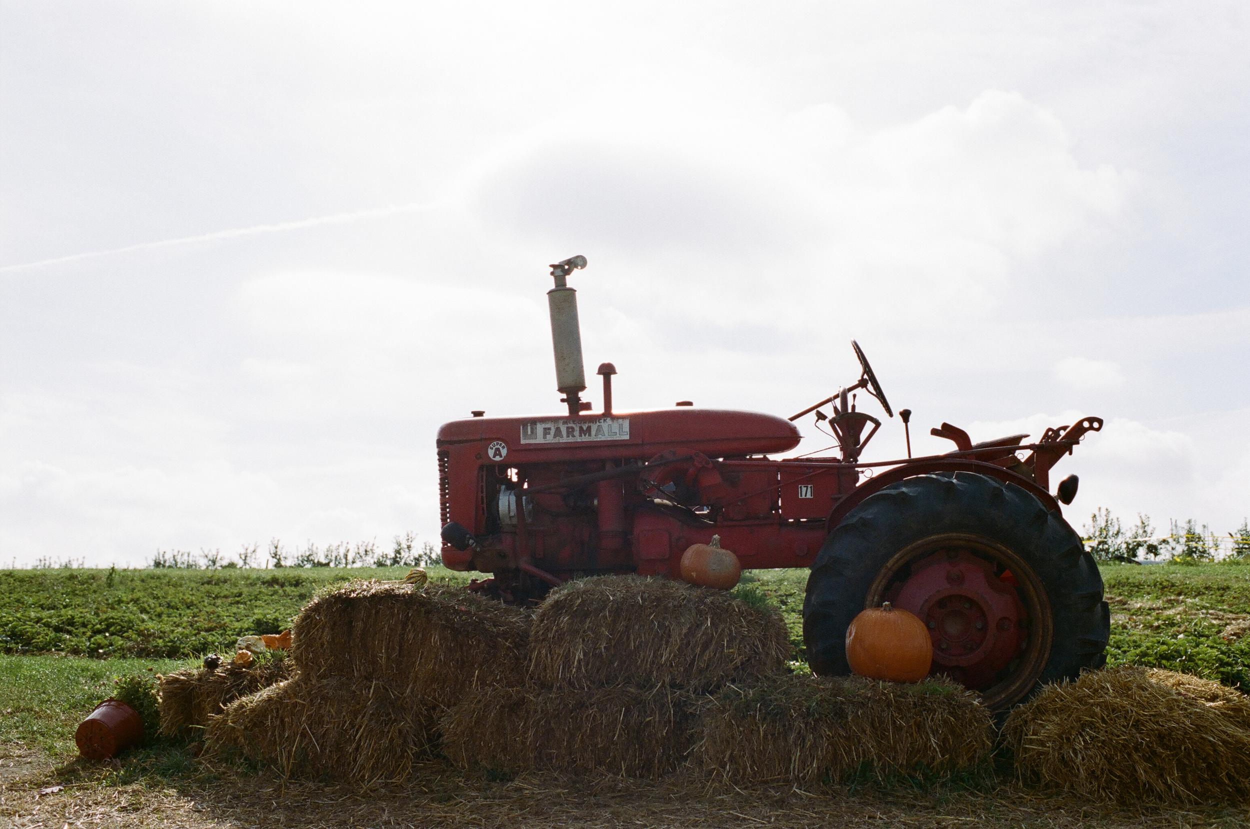 soergel-orchards-pittsburgh-018.jpg