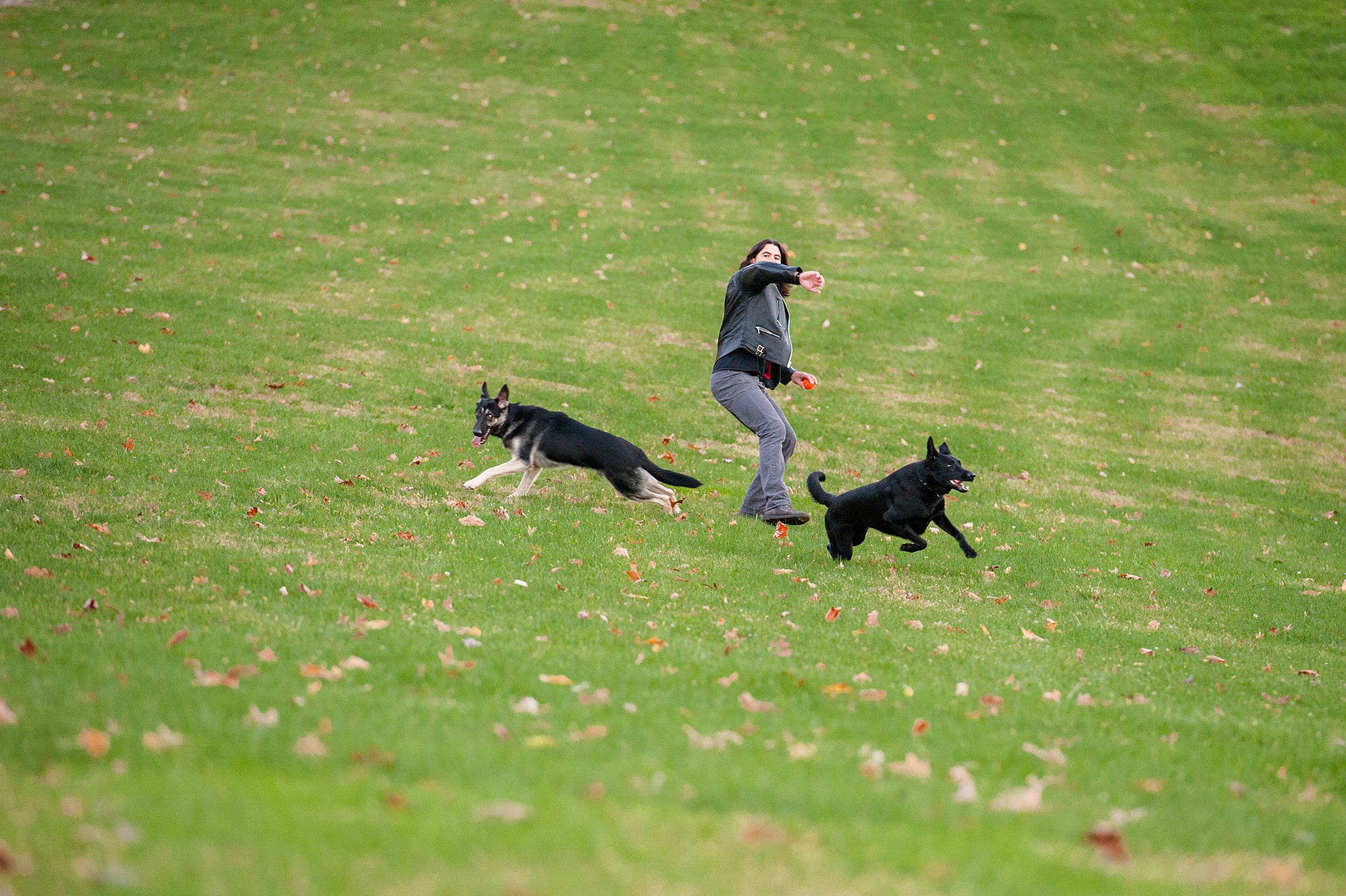 fall-family-photos-with-pets-035.jpg