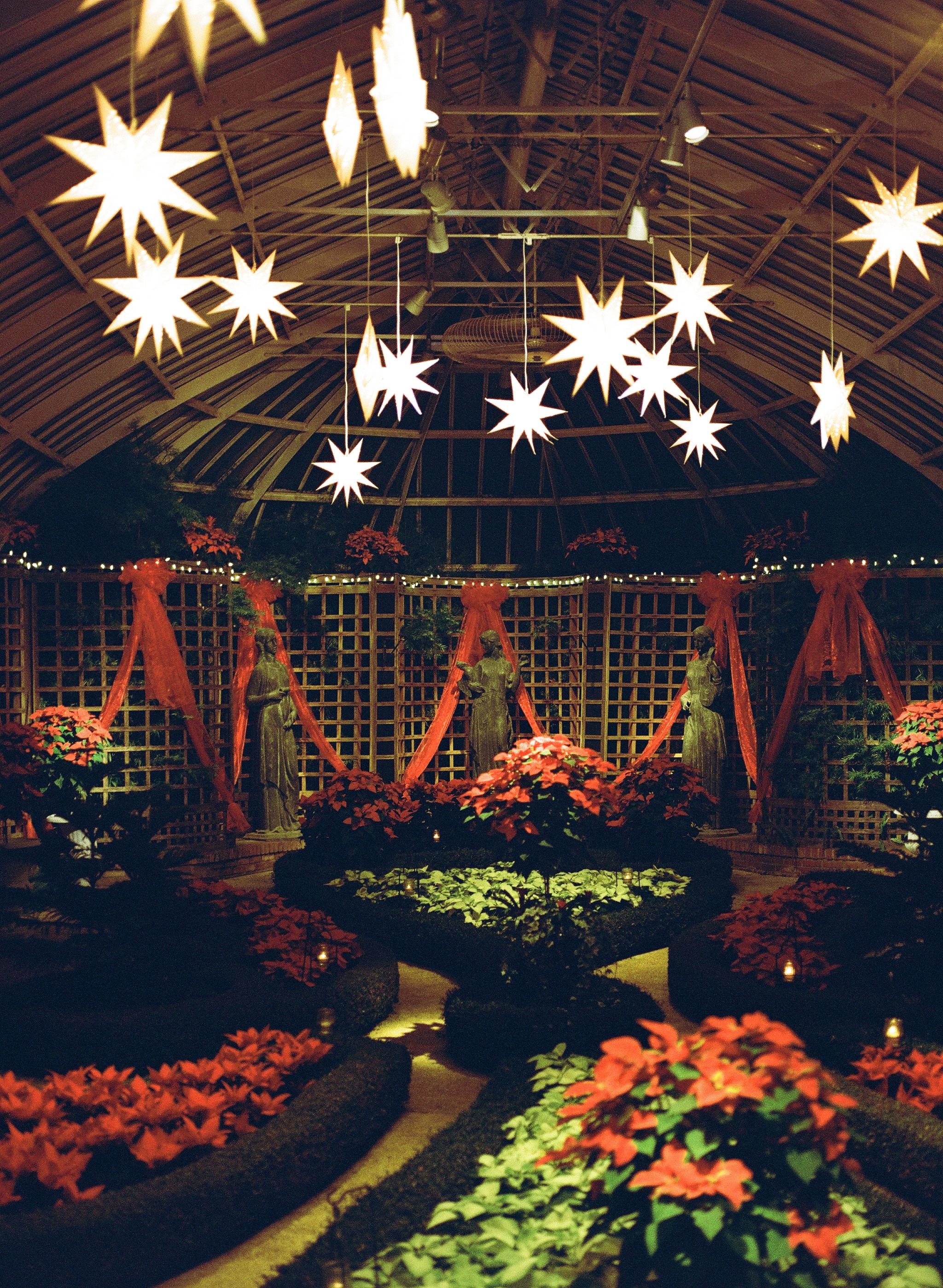 Phipps Conservatory Pittsburgh Winter Flower Show 019.jpg