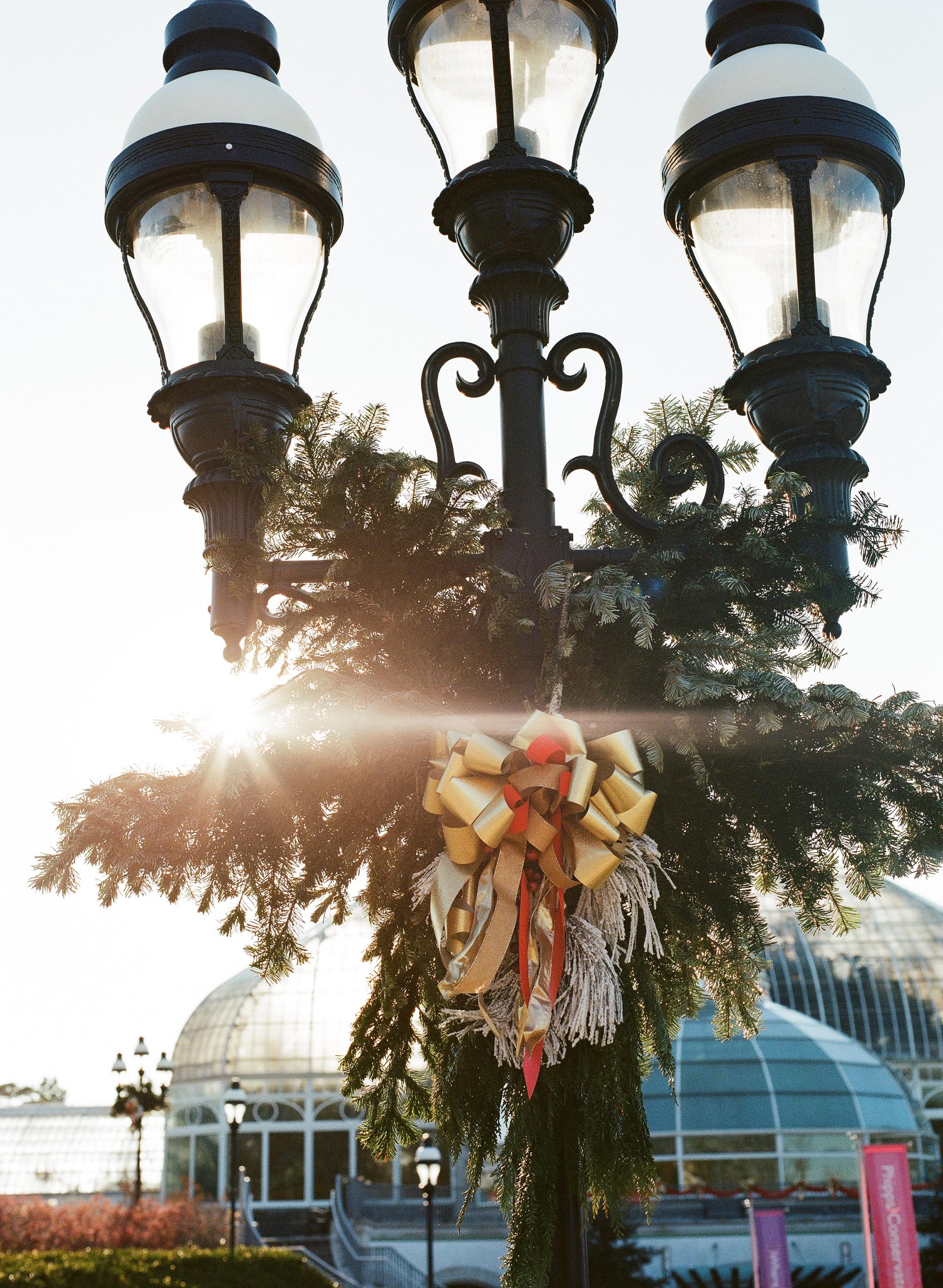 Phipps Conservatory Pittsburgh Winter Flower Show 038.jpg