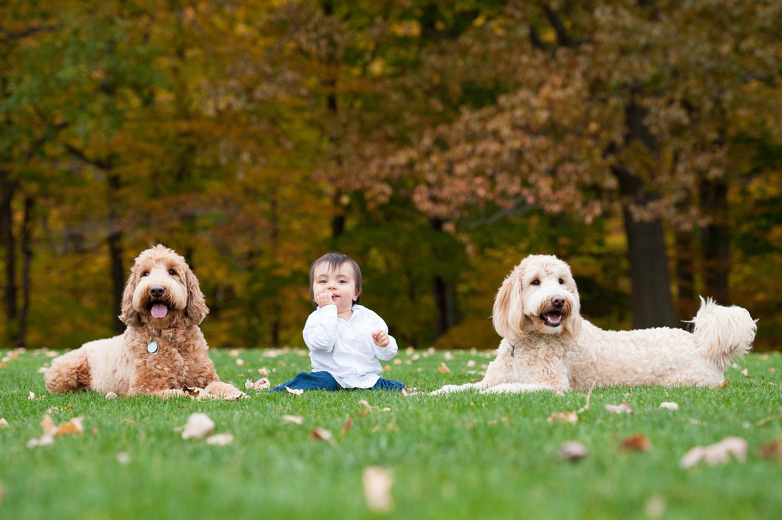 Pet and Family Photographer Erie Pennsylvania 023.jpg
