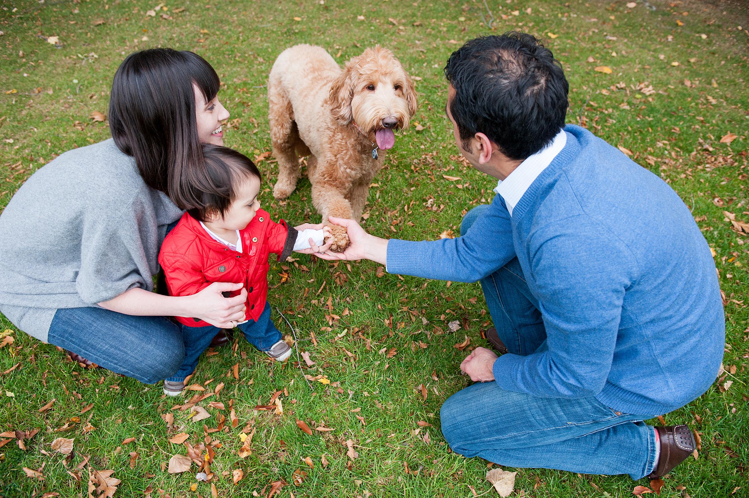 Pet and Family Photographer Erie Pennsylvania 052.jpg
