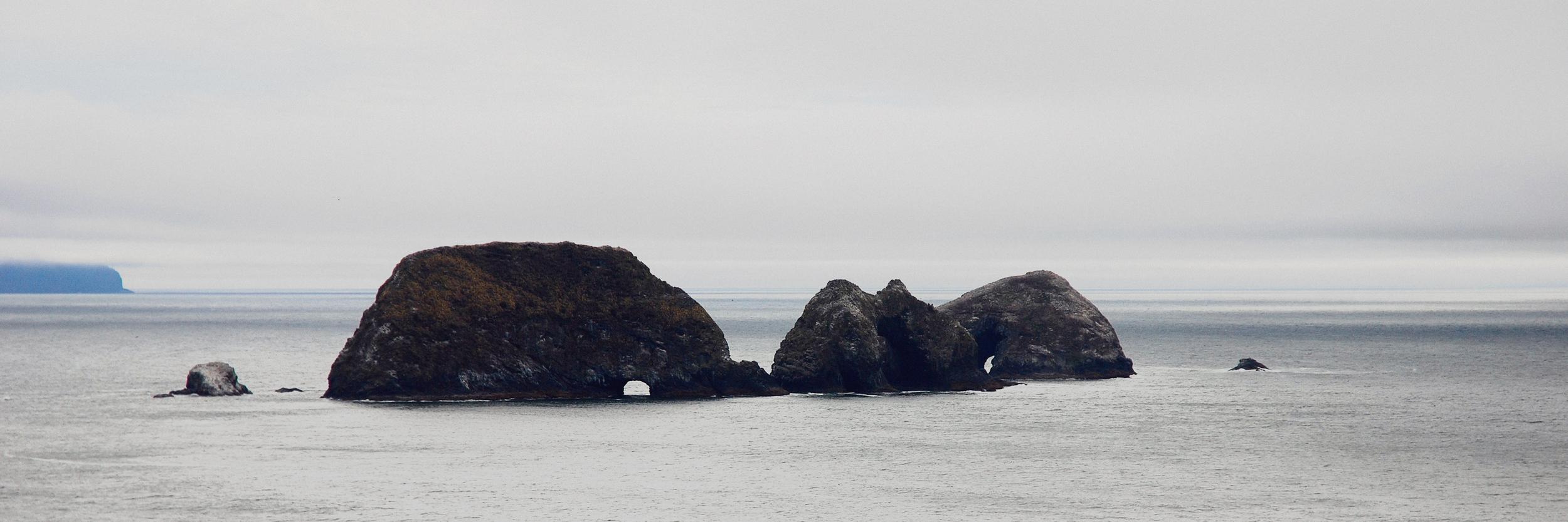 oregon coast 001.jpg