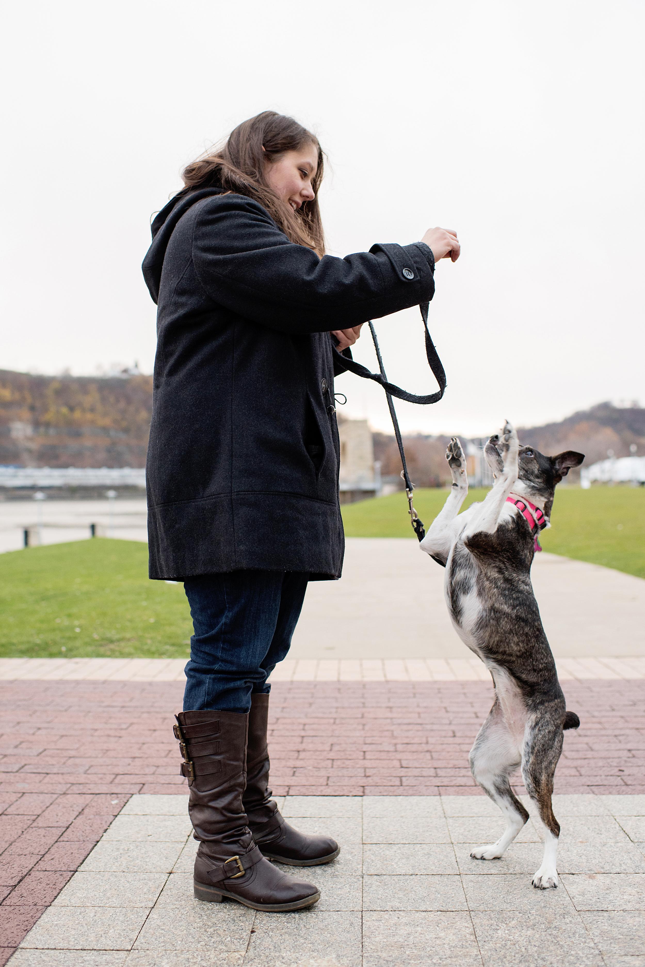 Remus Stella Dog Photography Pittsburgh 012.jpg