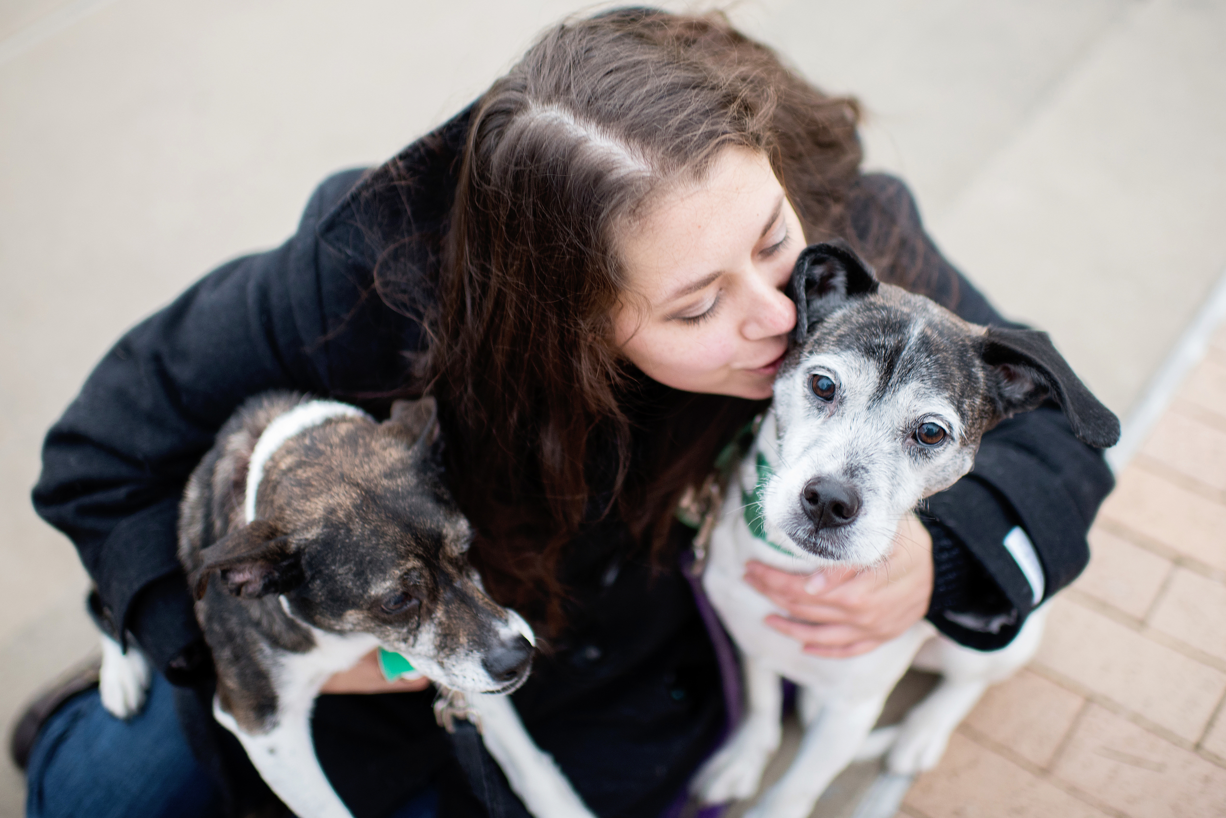 Remus Stella Dog Photography Pittsburgh 014.jpg
