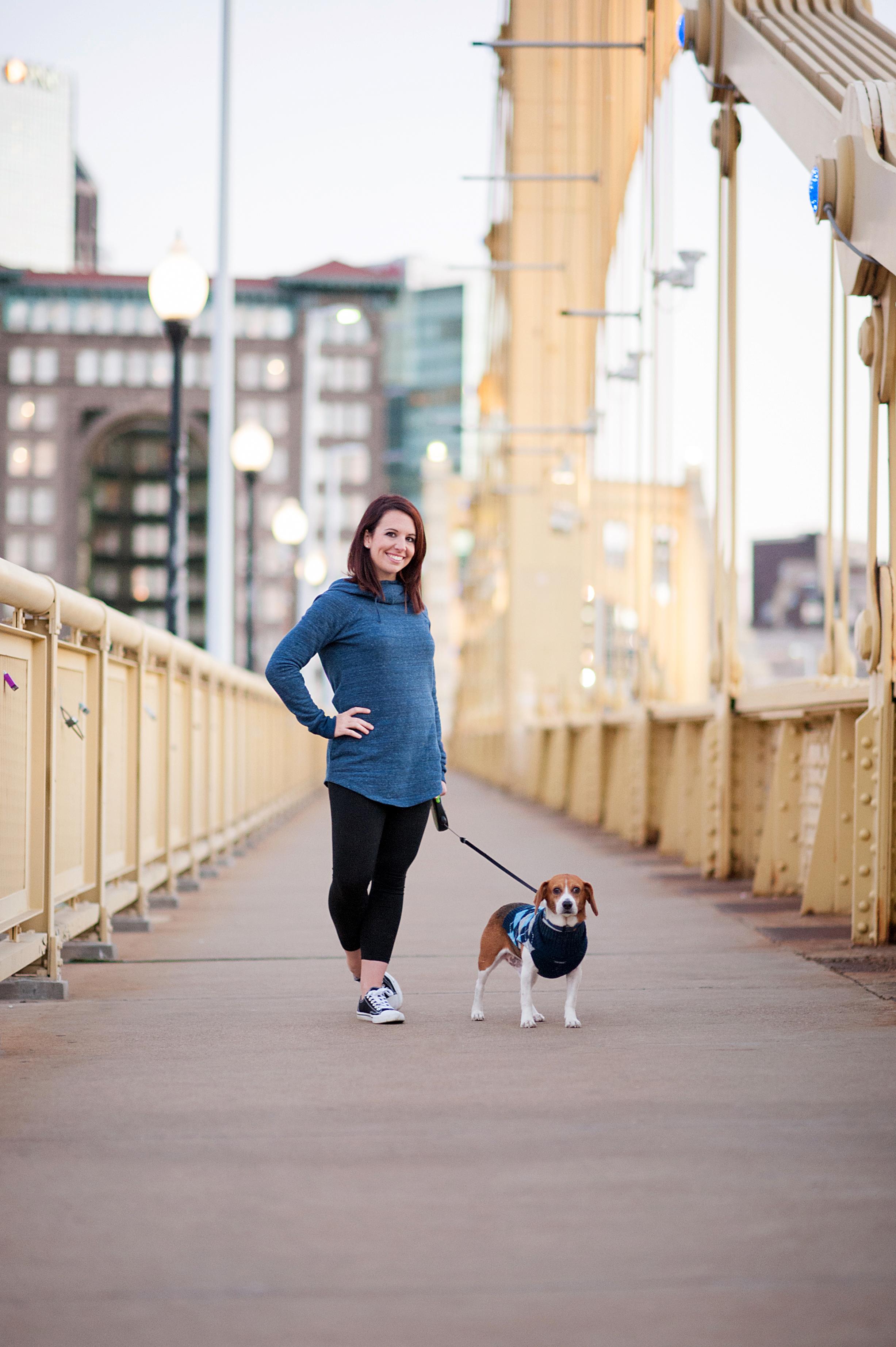 dexter jack-a-bee dog photography pittsburgh 030.jpg