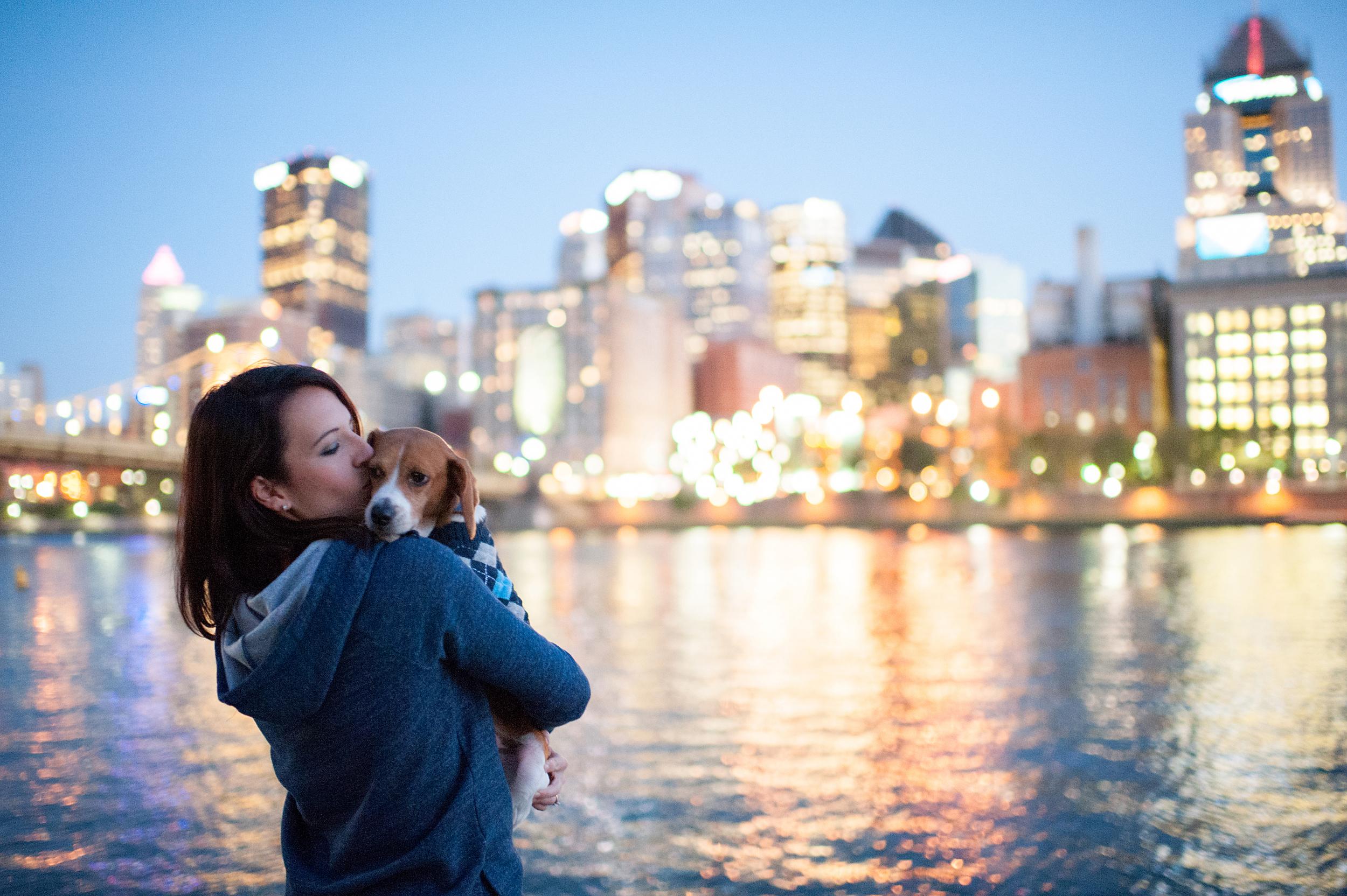 dexter jack-a-bee dog photography pittsburgh 032.jpg