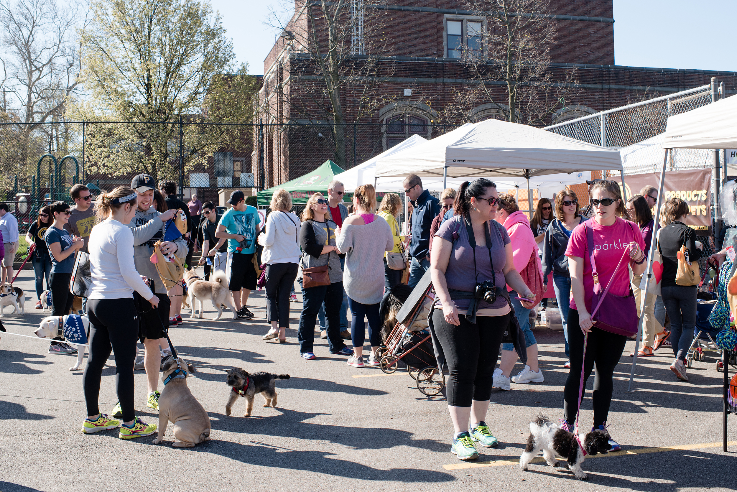 Bark Shadyside Pup Walk Pittsburgh 2016 030.jpg