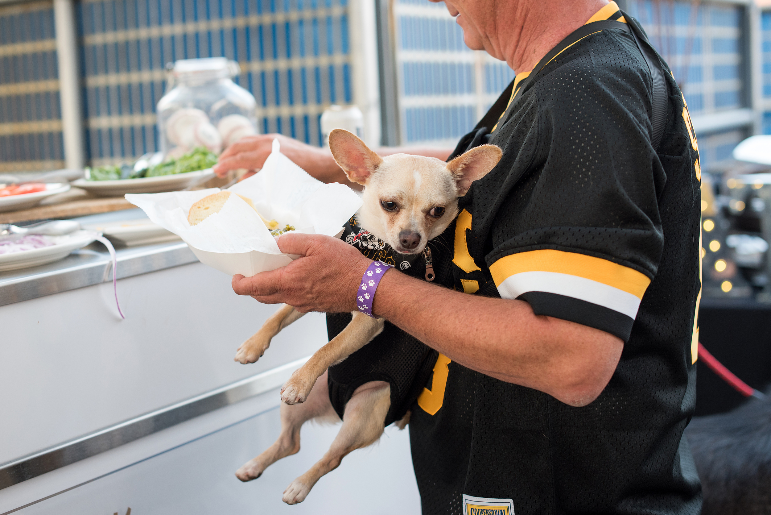 Pup Night at PNC Park-42.jpg