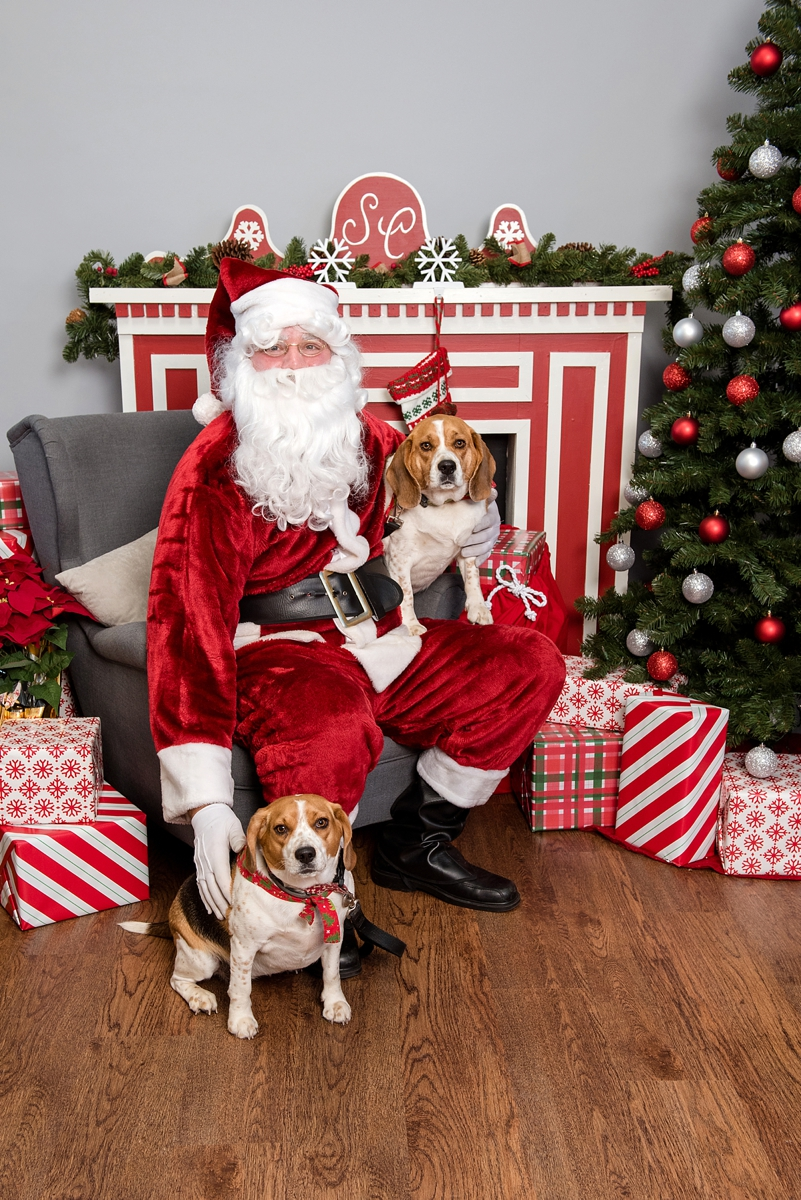 pet photos with Santa Petagogy Greensburg 005.jpg