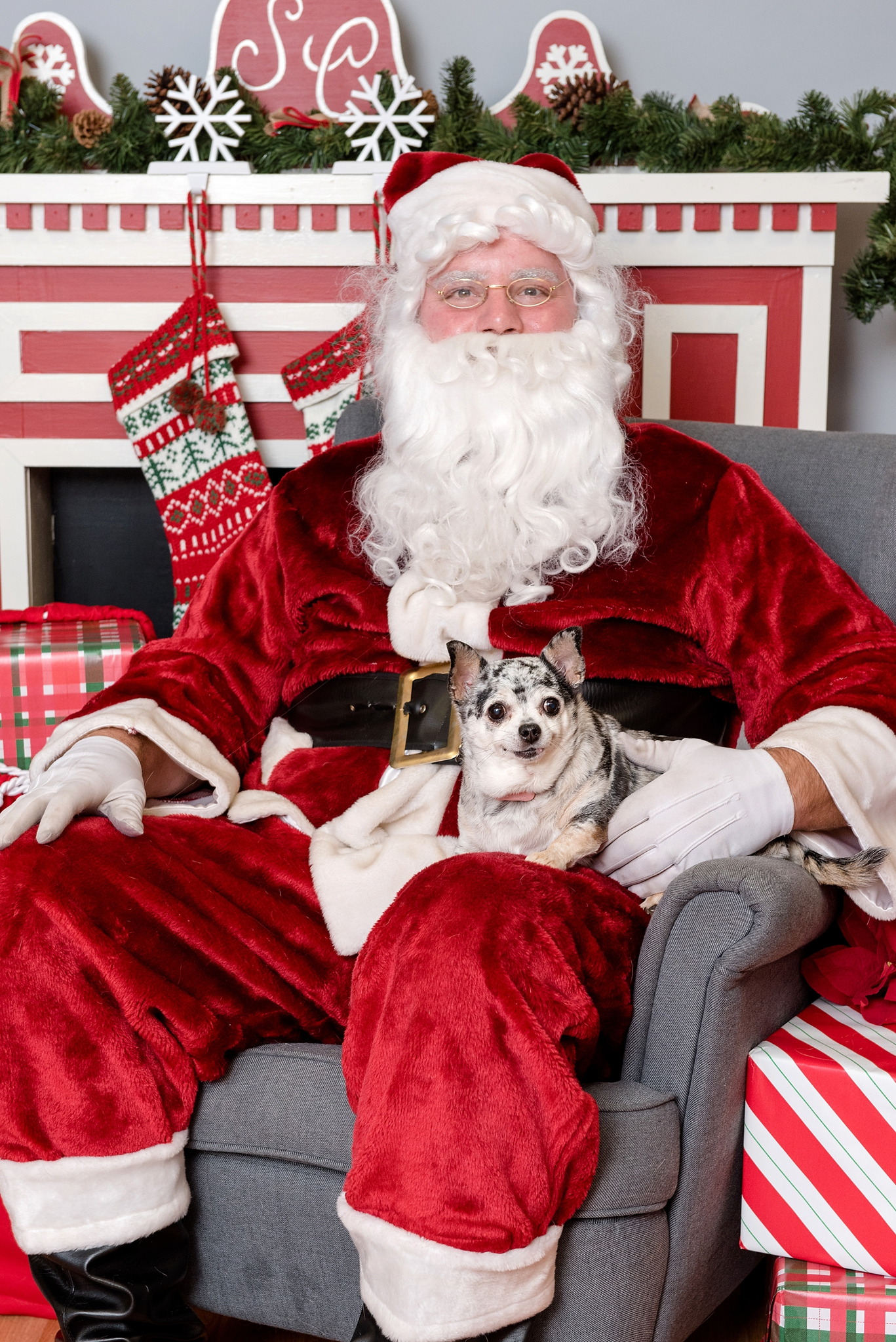 pet photos with Santa Jenny Karlsson Photography 003.jpg