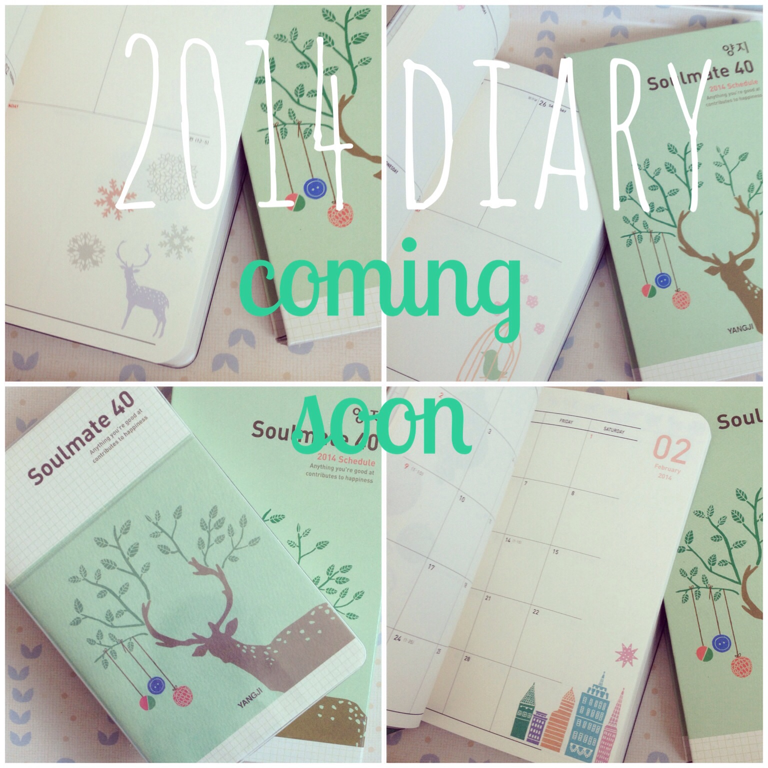 One of the diaries I will be stocking when I get back next week (also comes in pink, blue and yellow).
