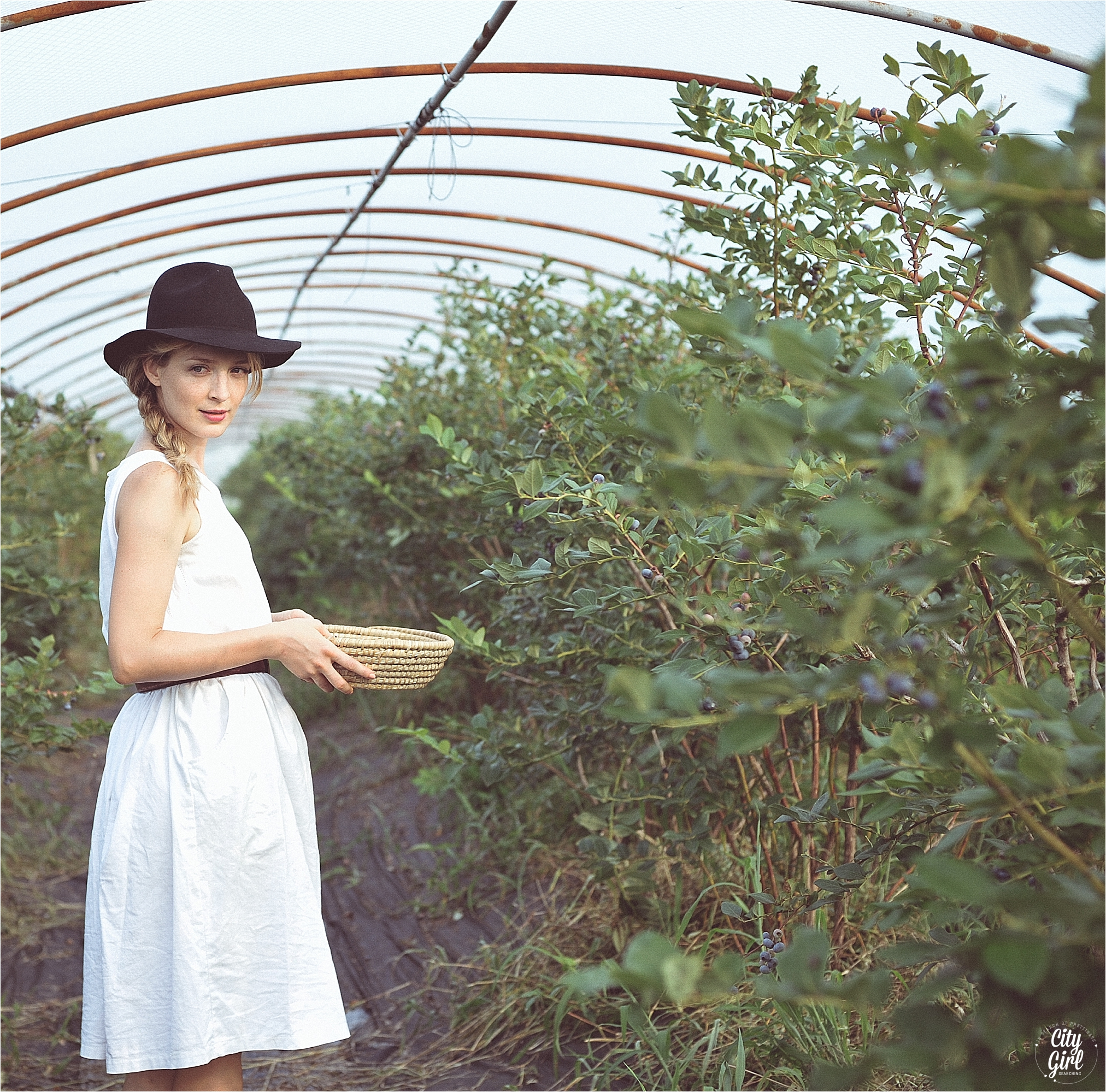 BlueberryFarmSouthKoreaHelen_0018.jpg