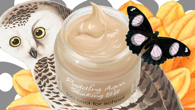 TOO COOL FOR SCHOOL PUDDING AQUA SHAKING BB REVIEW