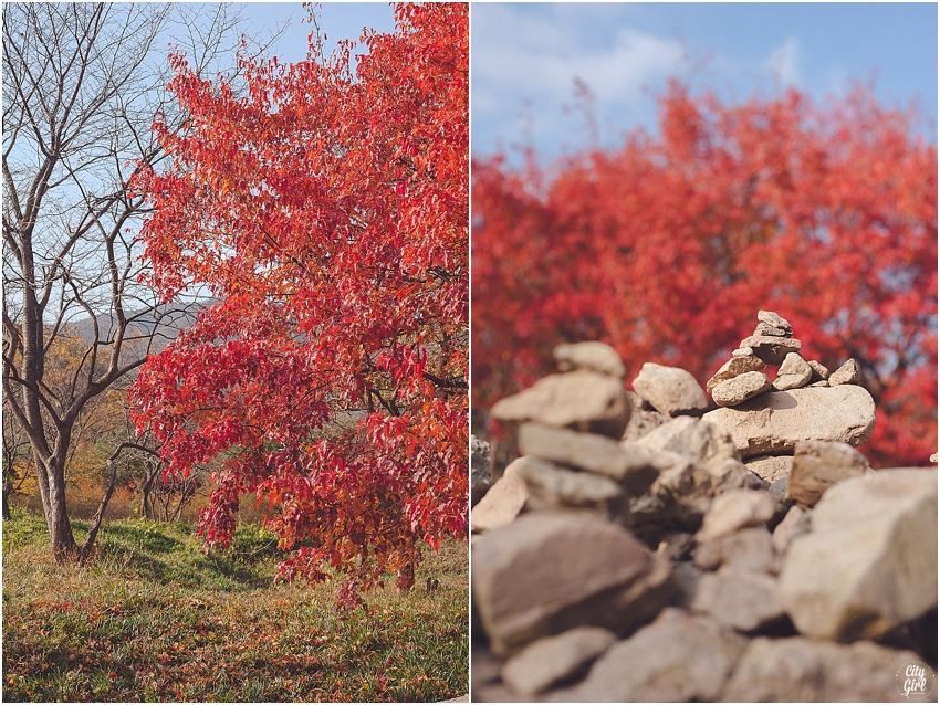 AutumnInKorea_0002.jpg