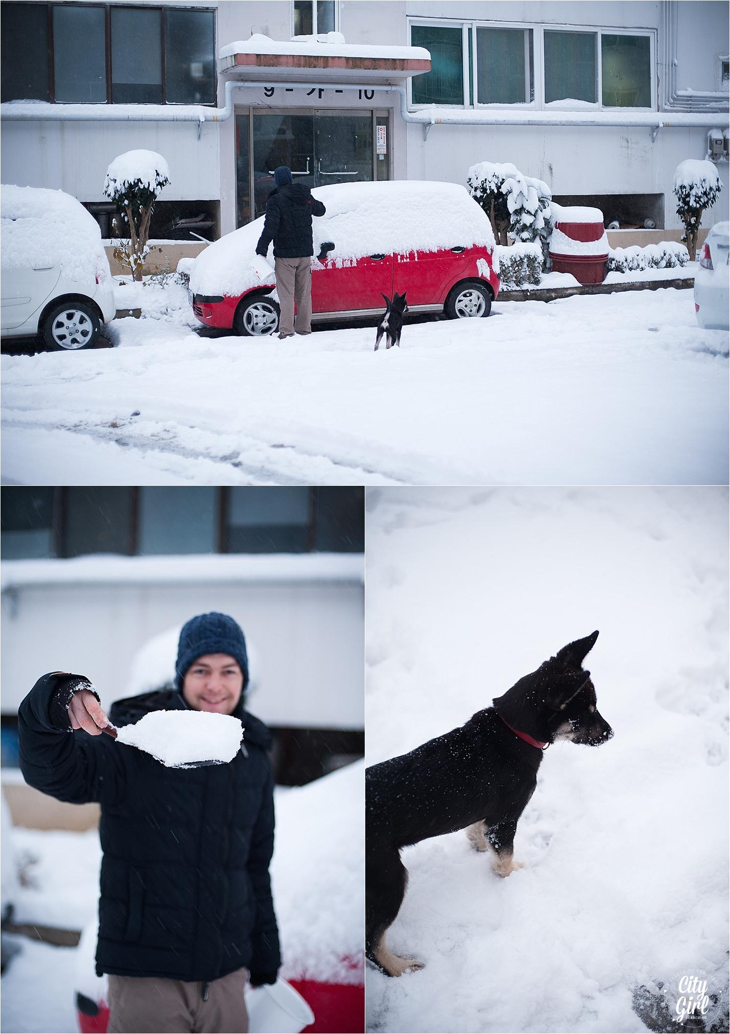 SnowInKorea_0003.jpg