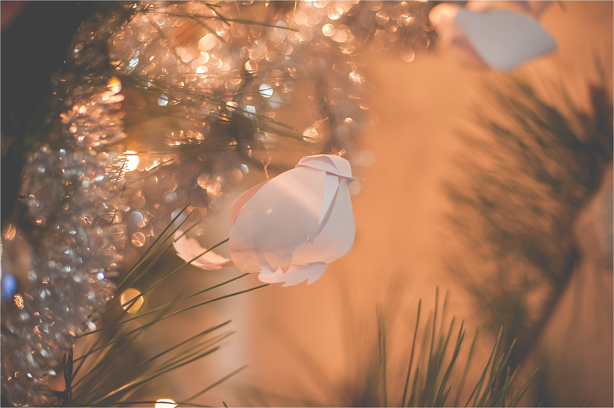 ChristmasInKorea_0003.jpg