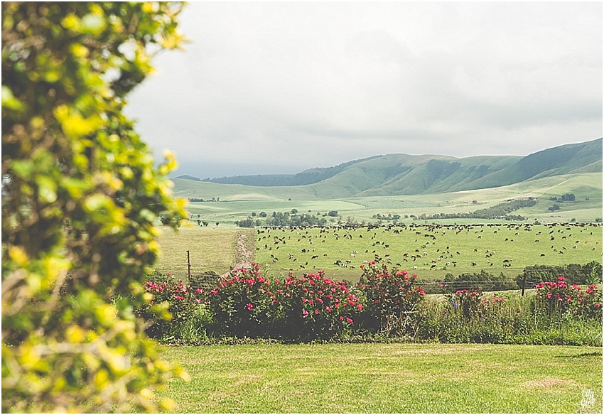 SouthAfricaTravel_0011.jpg