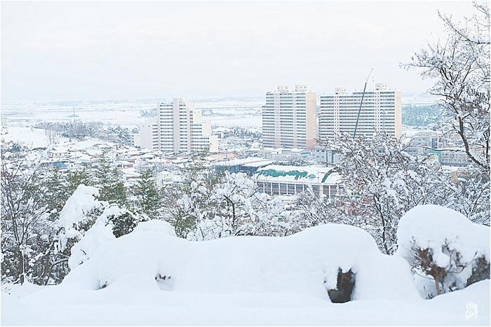 SnowInKorea_0002.jpg