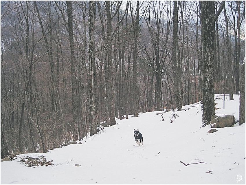 SkiingMujuSouthKoreaCampingInSnow_0016.jpg