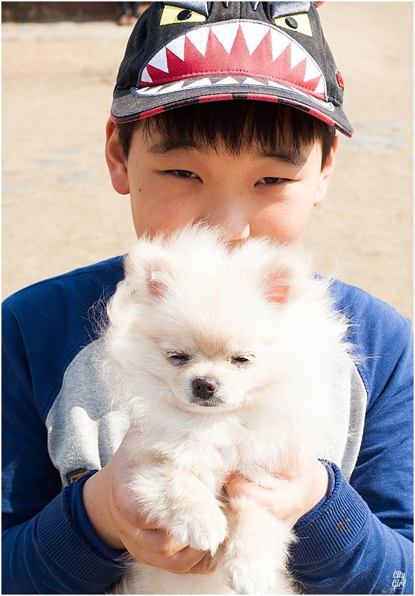 JeonjuDogParkSouthKorea_0081.jpg