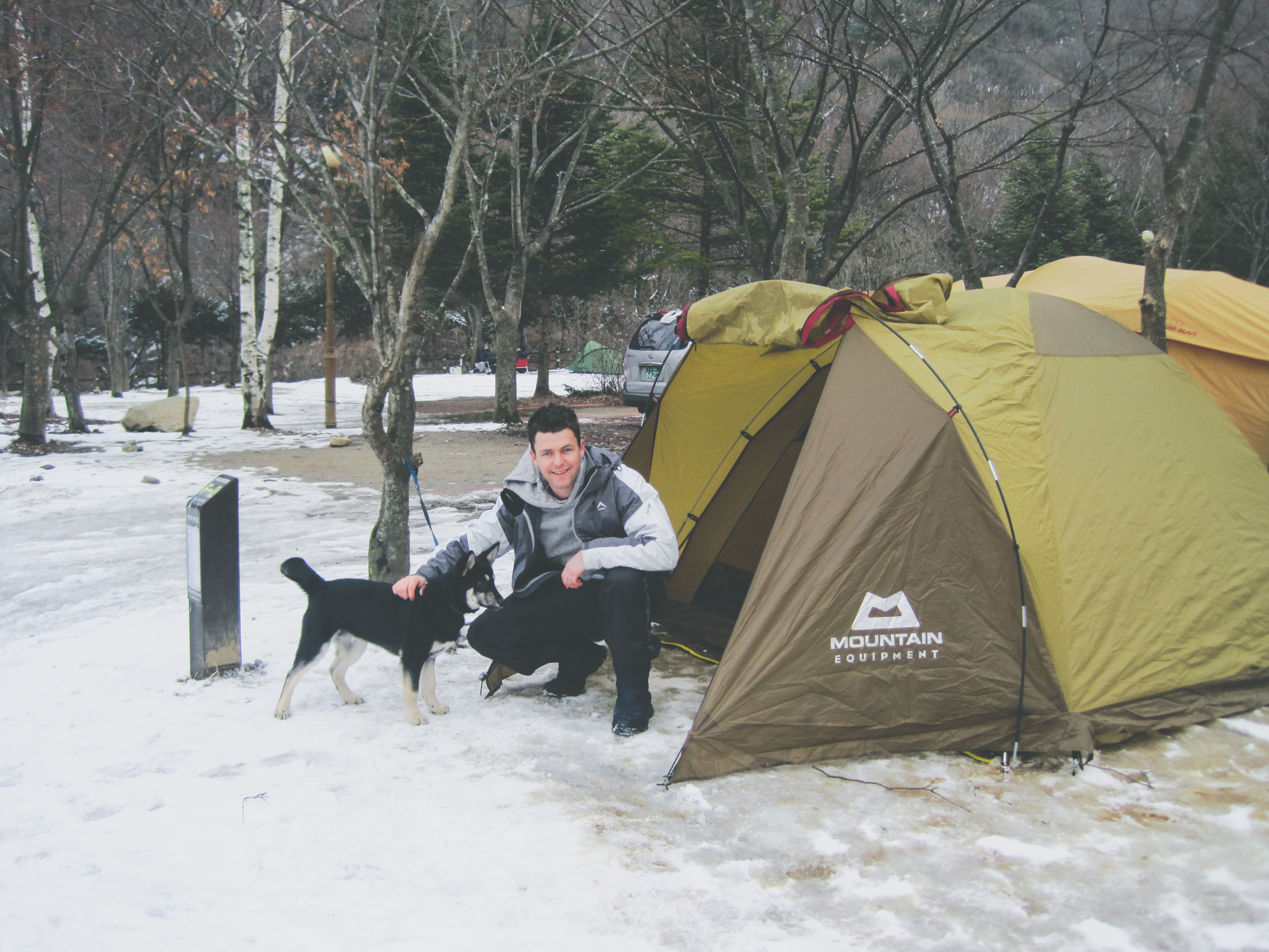 Camping with a dog in Korea