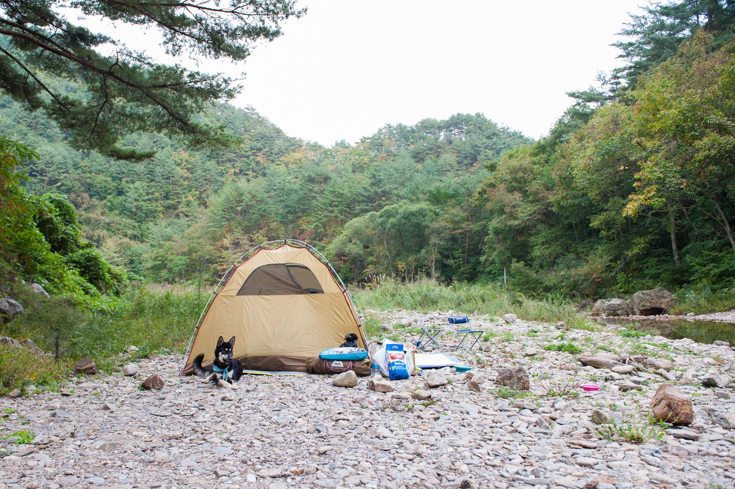 Camping in Korea Chuseok Gangwon Province (21 of 135).jpg