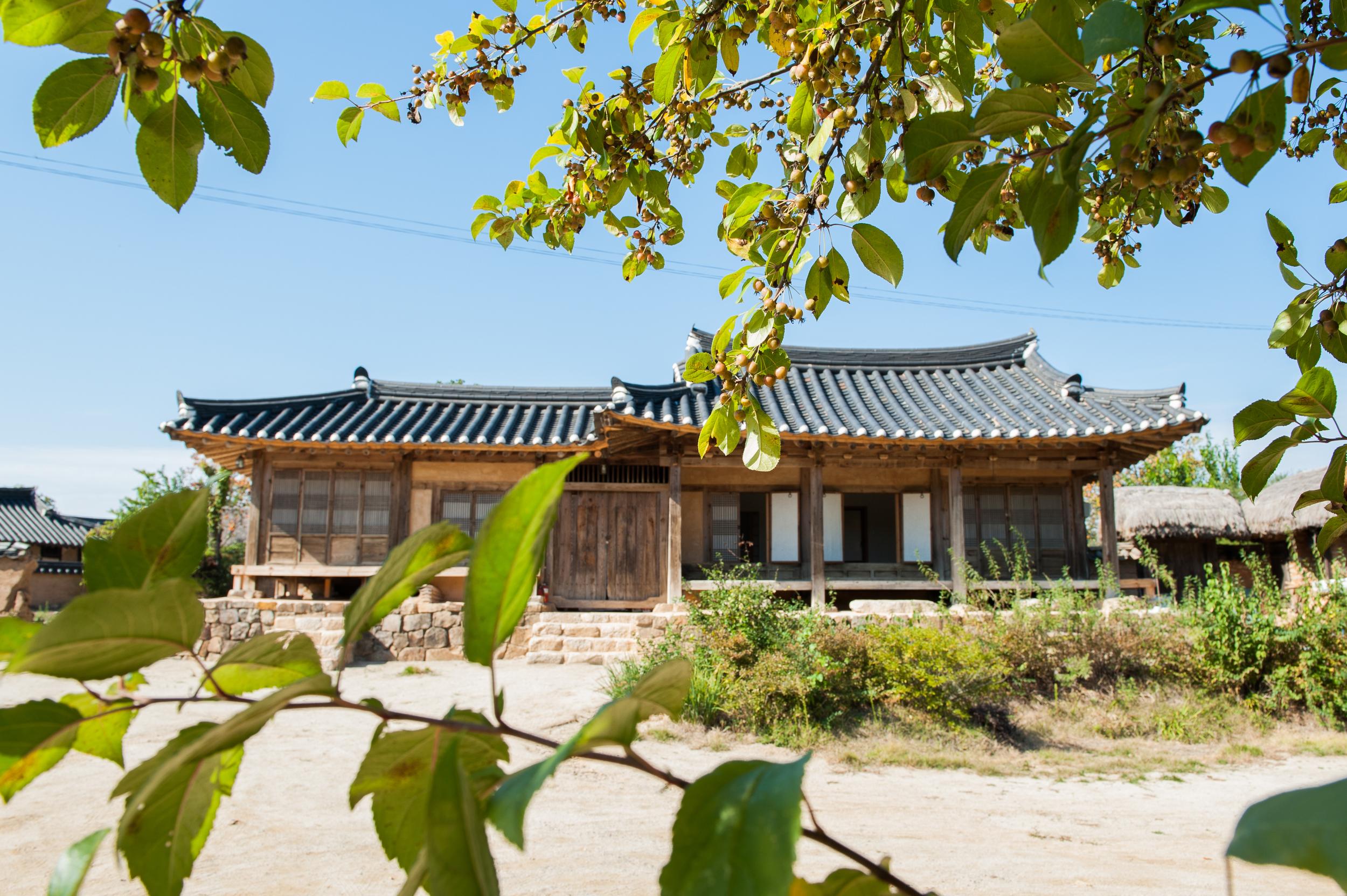 Camping in Korea Chuseok Gangwon Province (108 of 135).jpg