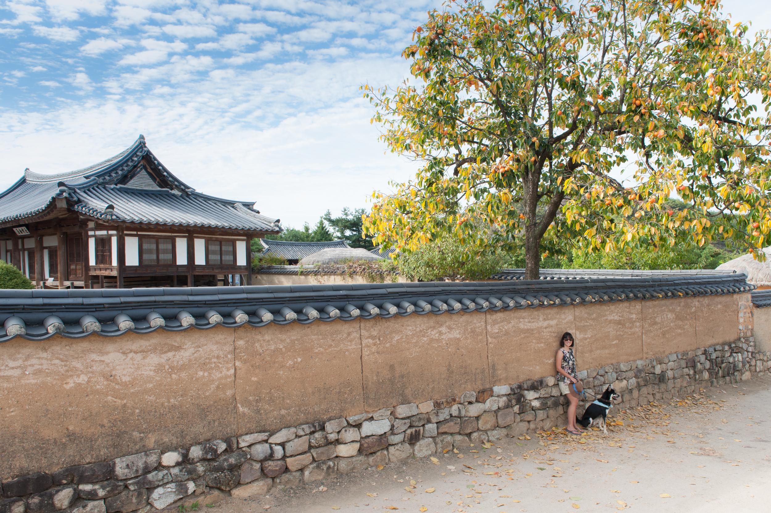 Camping in Korea Chuseok Gangwon Province (129 of 135).jpg