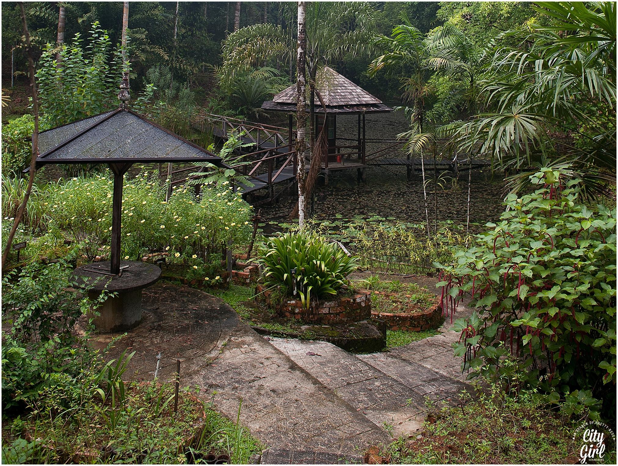 Semenggoh Orangutan Nature Reserve_0104.jpg