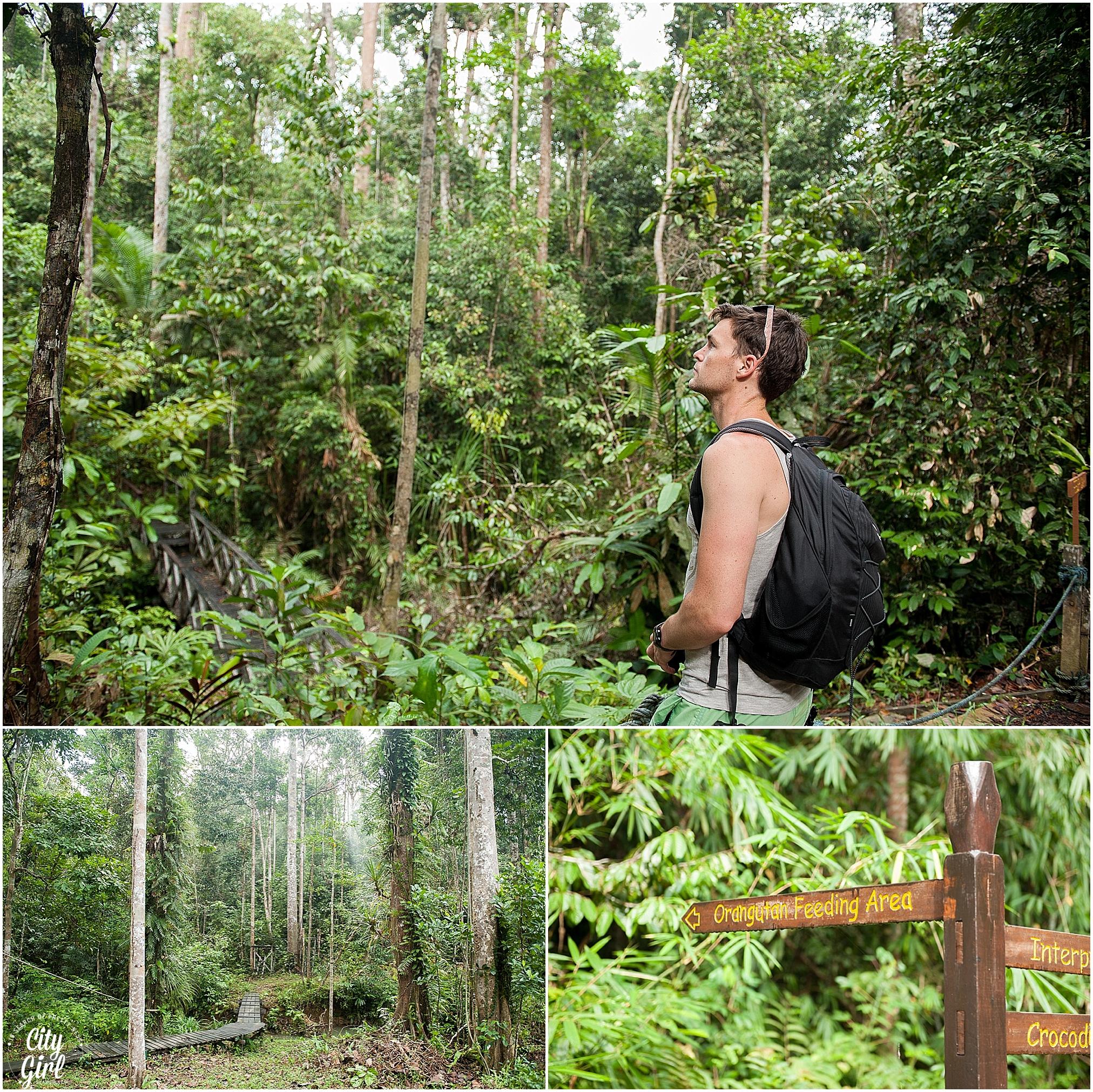 Semenggoh Orangutan Nature Reserve_0106.jpg