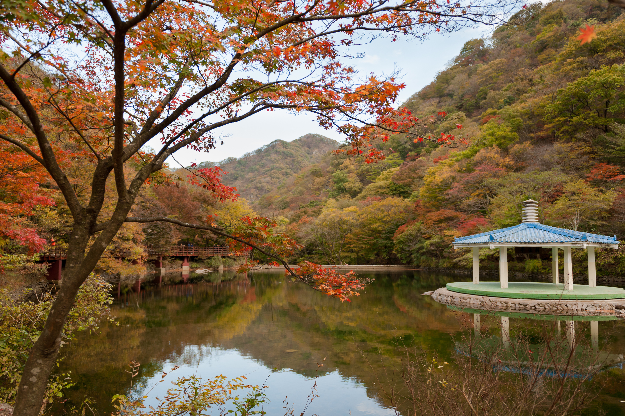 Naejangsan Autumn Fall Leaves Colours South Korea CityGirlSearching Photography (29 of 72).jpg