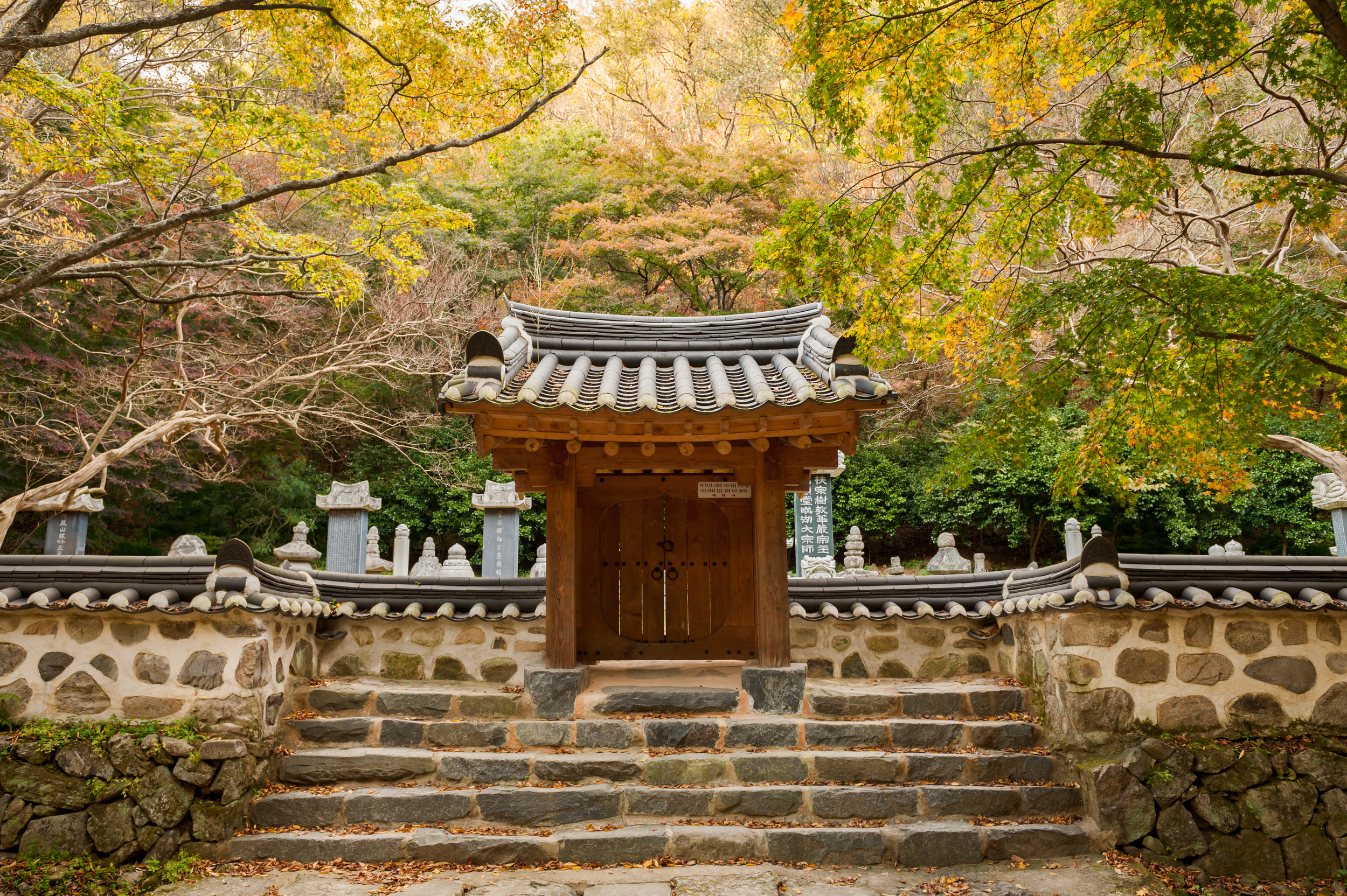 Naejangsan Autumn Fall Leaves Colours South Korea CityGirlSearching Photography (31 of 72).jpg