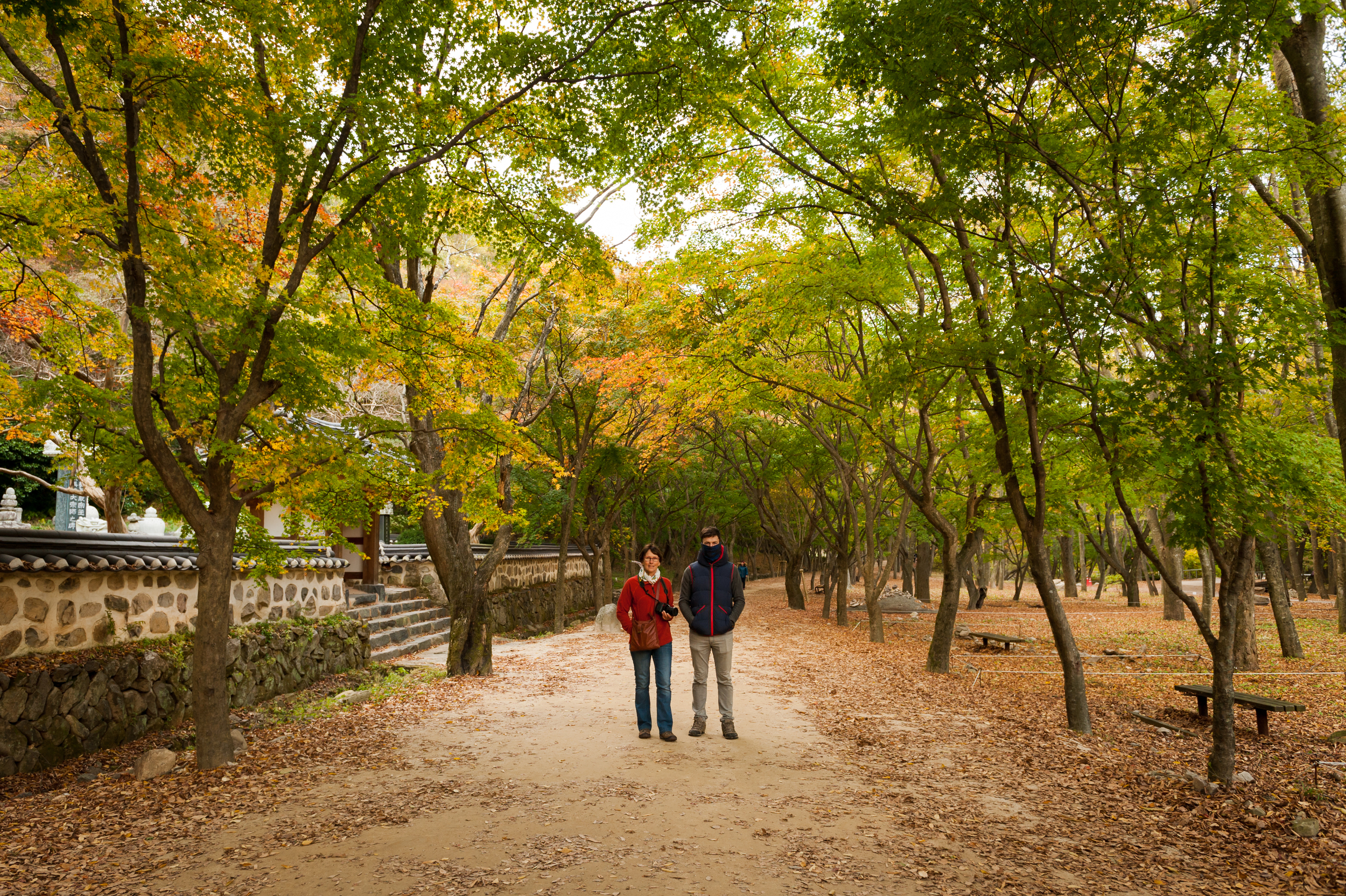 Naejangsan Autumn Fall Leaves Colours South Korea CityGirlSearching Photography (32 of 72).jpg