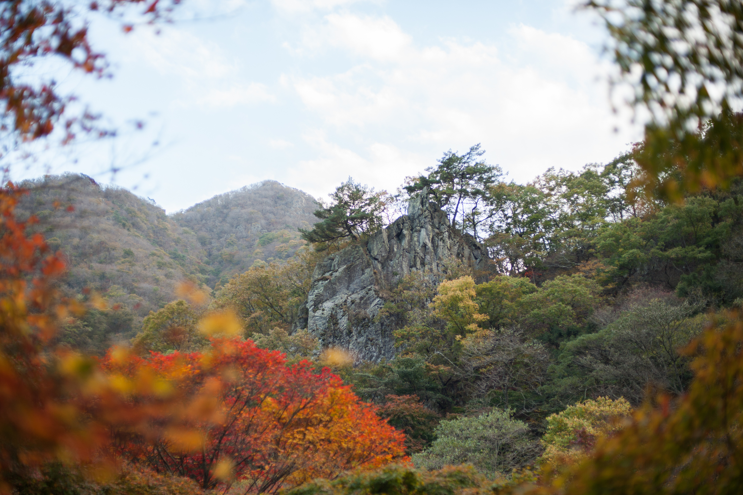 Naejangsan Autumn Fall Leaves Colours South Korea CityGirlSearching Photography (50 of 72).jpg